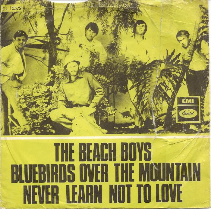 the-beach-boys-never-learn